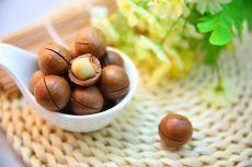 Curiozități despre nucile macadamia